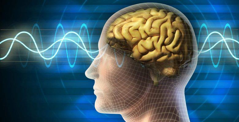 Beyincik Dejenerasyonu Nedir? Beyincik Dejenerasyonu Neden Olur?