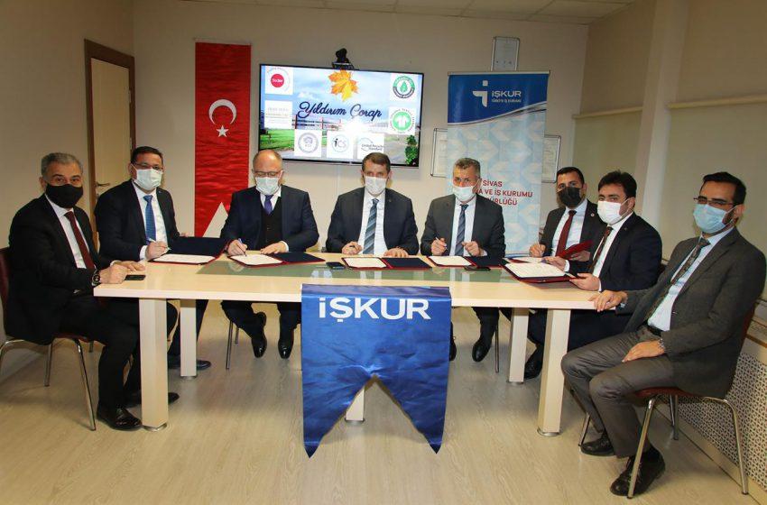 Sivas'ta İşbaşı Eğitim Programları ile İstihdama Büyük Katkı Sağlanıyor